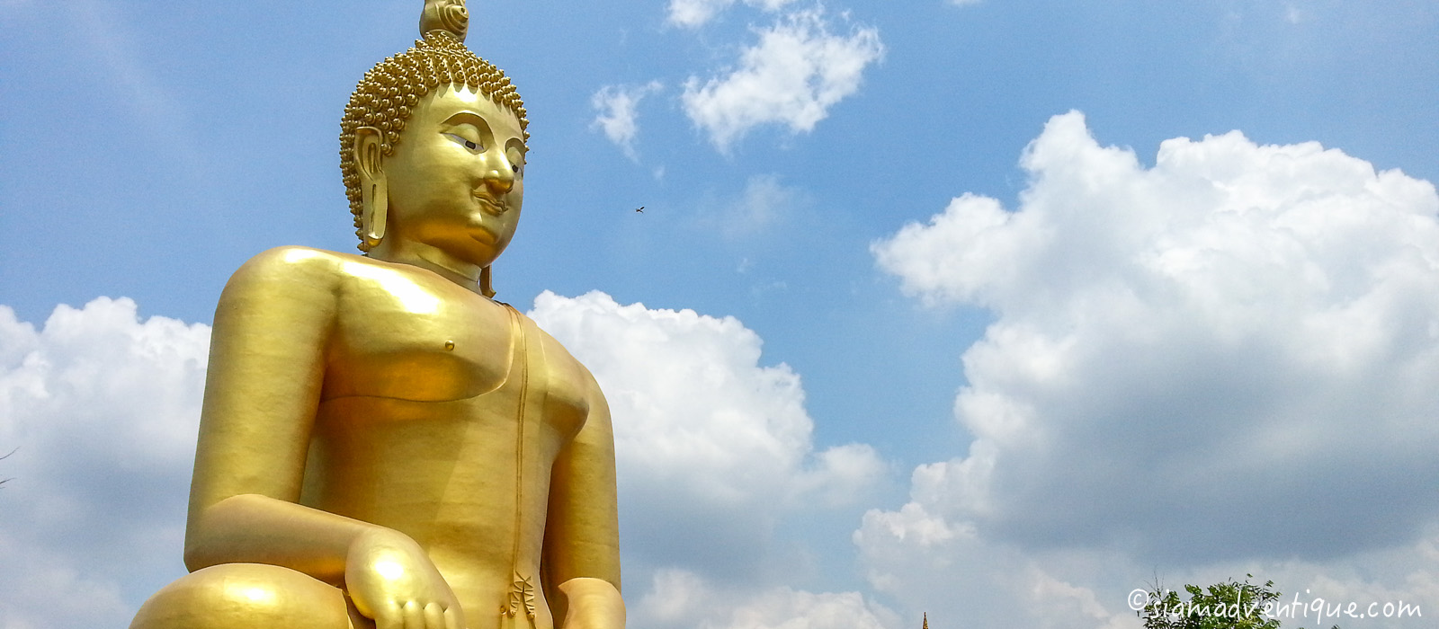 The Great Buddha of Thailand